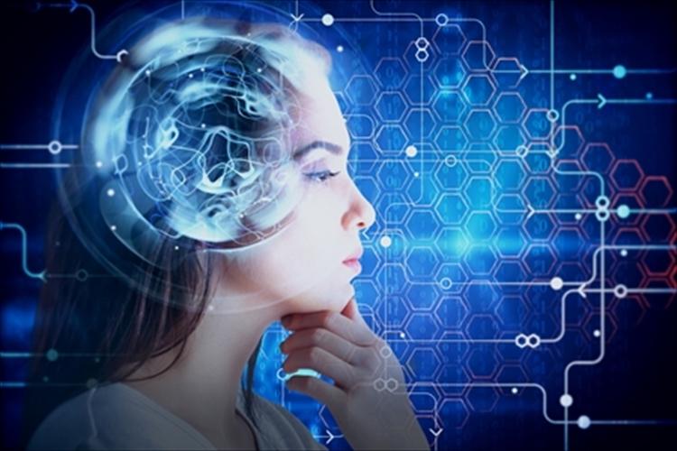 脳の働きを向上させる